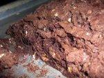 BrownieB2