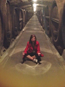 Visiting wine caves in Wurzburg, Germany